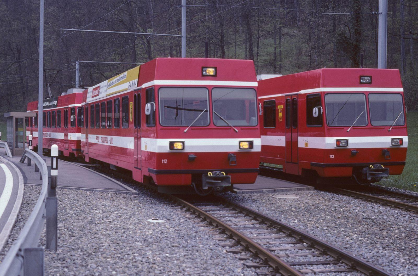 FW Zugkreuzung Pendelzug Murkart