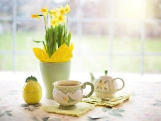 Daffodils Tea Tea Time Cup Of Tea